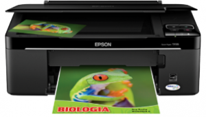 Epson stylus tx135 Wireless Printer Setup, Software & Driver